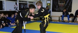 Помощь в организации соревнований по джиу-джитсу
